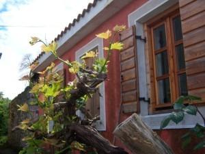 Holiday house Stara Frajla Kukljica