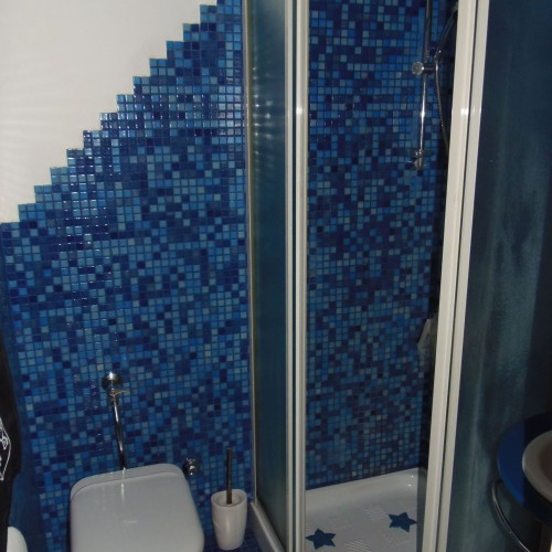 showr in master bedroom